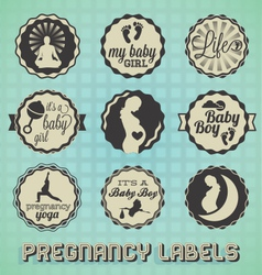 Vintage Pregnancy Labels and Icons vector image vector image