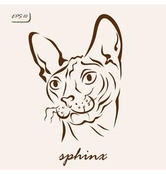 Sphinx cat vector