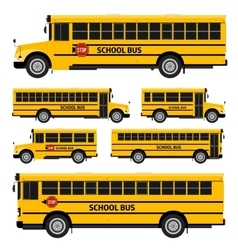 School buses vector image