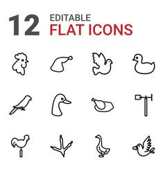 12 bird icons vector