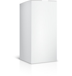 Blank paper or cardboard box template on white vector image