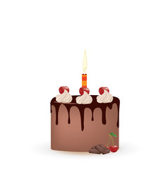 chocolate cherry birthday cake vector image
