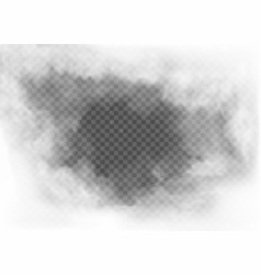 fog and smoke isolated on transparent background vector image
