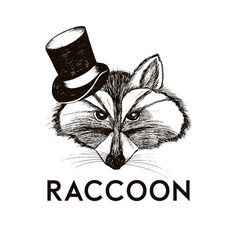Hipster raccoon muzzle wearing top hat hand drawn vector