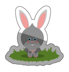 Isolated rabbit cartoon design vector