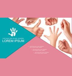 realistic hand gestures composition vector image