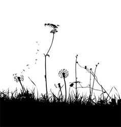 wild weeds and flower silhouettes vector image vector image