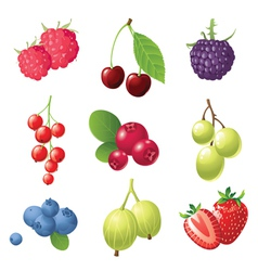 9 sweet berries icons set vector image vector image