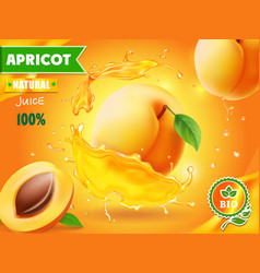 Apricot fruit in juice splash advertising poster vector