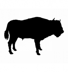 Bison vector