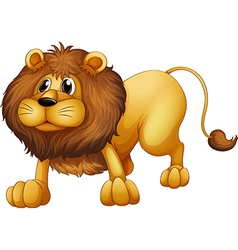 Cartoon Lion vector image