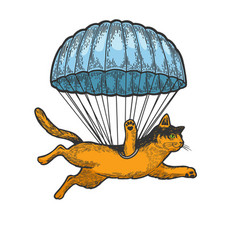 cat fly with parachute sketch engraving vector image