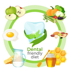 dental friendly diet with products on vector image