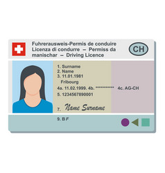 Driving license icon flat style vector