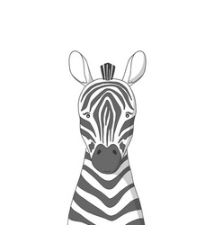Hand drawn zebra poster for baby room vector