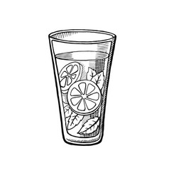 alcoholic cocktail hand drawn vector image vector image