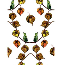 Physalis pattern2 vector image vector image