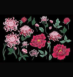 hand draw of chrysanthemum and peonies vector image