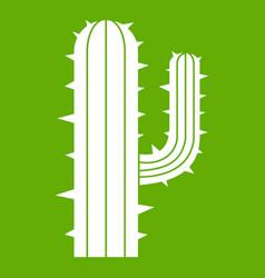 mexican cactus icon green vector image