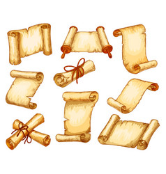 parchment paper scroll manuscripts rolls sketch vector image