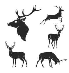 Set of black forest deer silhouettes suitable for vector