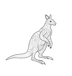 kangaroo coloring book for adults vector image