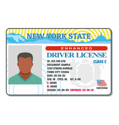 Driving license for new york icon flat style vector