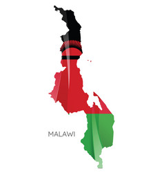 map malawi with an official flag on white vector image
