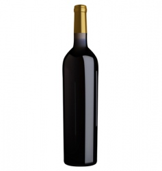 red wine bottle vector image