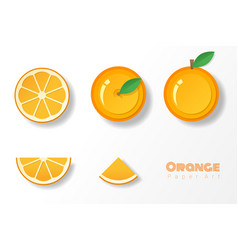 Set of oranges in paper art style vector