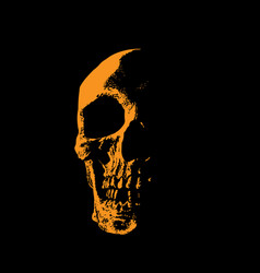 skull portrait silhouette in contrast backlight vector image