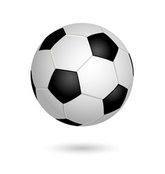 Soccer ball isolated on white background leather vector