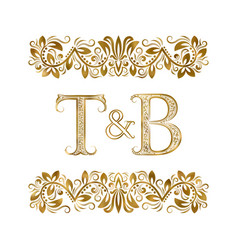 T and b vintage initials logo symbol letters vector
