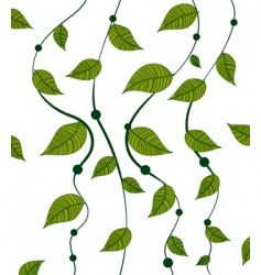 Vines pattern vector