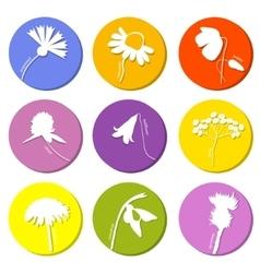 Wild flowers icons set vector image