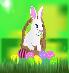 Beautiful white Easter bunny in the wicker basket vector image