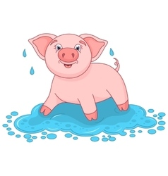 cute pig in a puddle funny vector image vector image