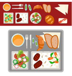 Airplane meal on tray vector