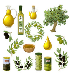 Cartoon olive oil elements set vector