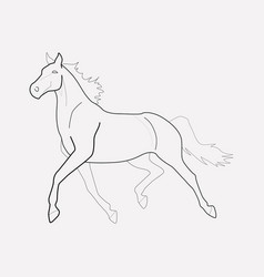 horse icon line element of vector image
