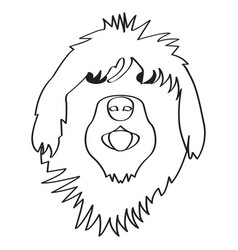 isolated english sheepdog avatar vector image