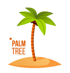 palm tree green leaf tropical sand beach vector image