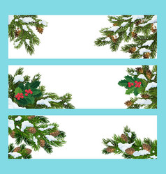 Pine and holly tree branches christmas banners vector