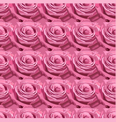 Seamless pattern of pink lavender garden rose vector