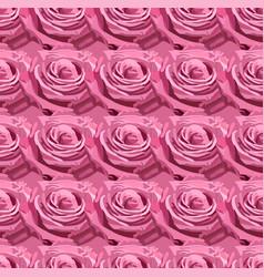 seamless pattern of pink lavender garden rose vector image