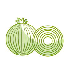 Silhouette fresh onion with slice organ vegetable vector