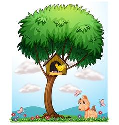 Bird dog and butterflies vector image