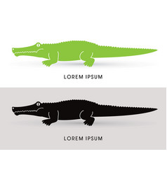 crocodile side view vector image