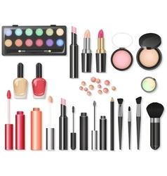 Beauty cosmetics Makeup with cosmetic tools vector