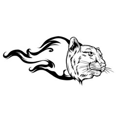 black silhouette a head a tiger with a flame vector image